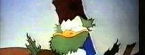 Aparat fotograficzny Donalda